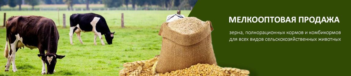 Мелкооптовая продажа зерна, полнорационных кормов